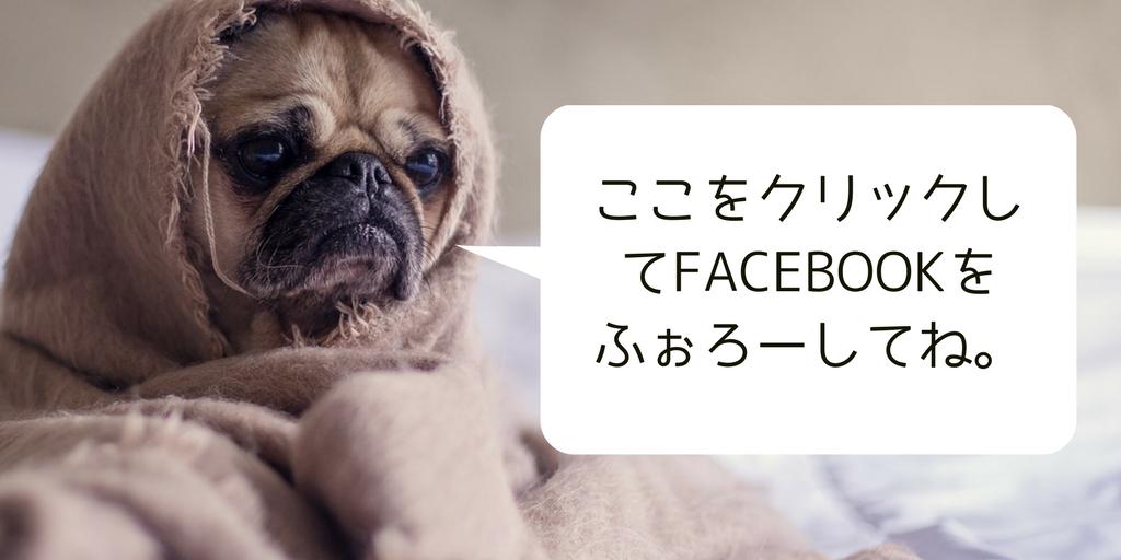 Facebookで旅の最新情報を受け取れます