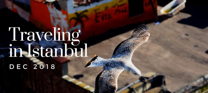 ノマド的トルコ-イスタンブール旅は気分上々