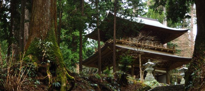 Daiyuzan Saijoji Temple is the perfect place to feel a little Zen
